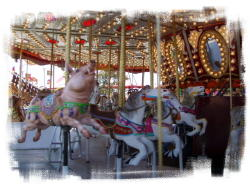 carousel at orange county fair