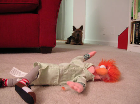 death of beaker