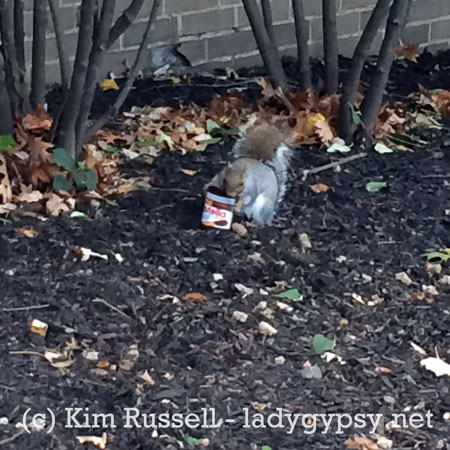 squirrelnutella